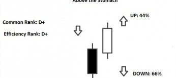above the stomach