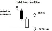 bullish counterattack line