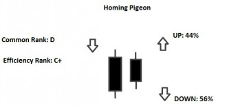 homing pigeon pattern
